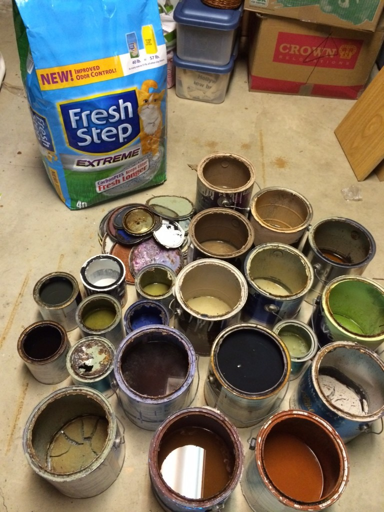 cat litter to dry out paint
