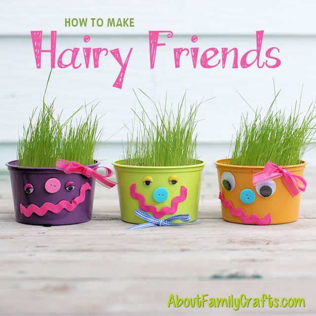 How-to-Make-Hairy-Friends