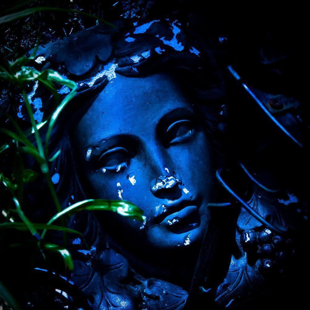 Blue Lady NZ