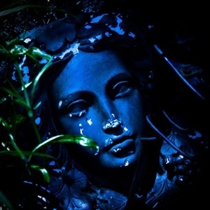 Blue Lady New Zealand