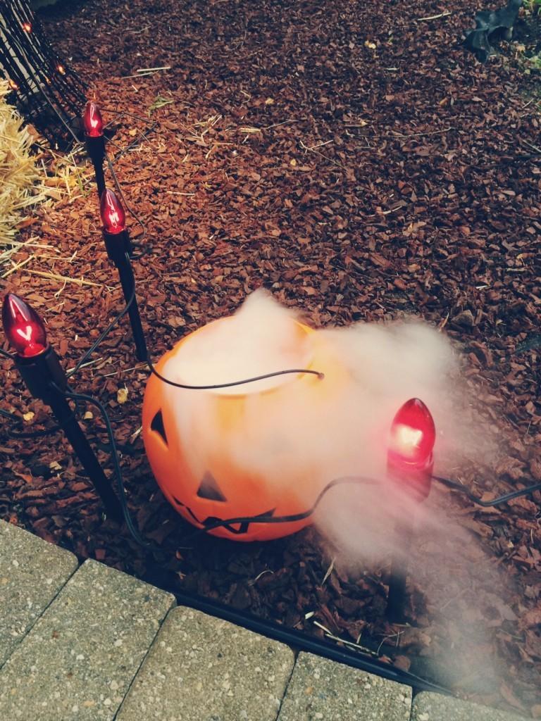 foggy pumpkin