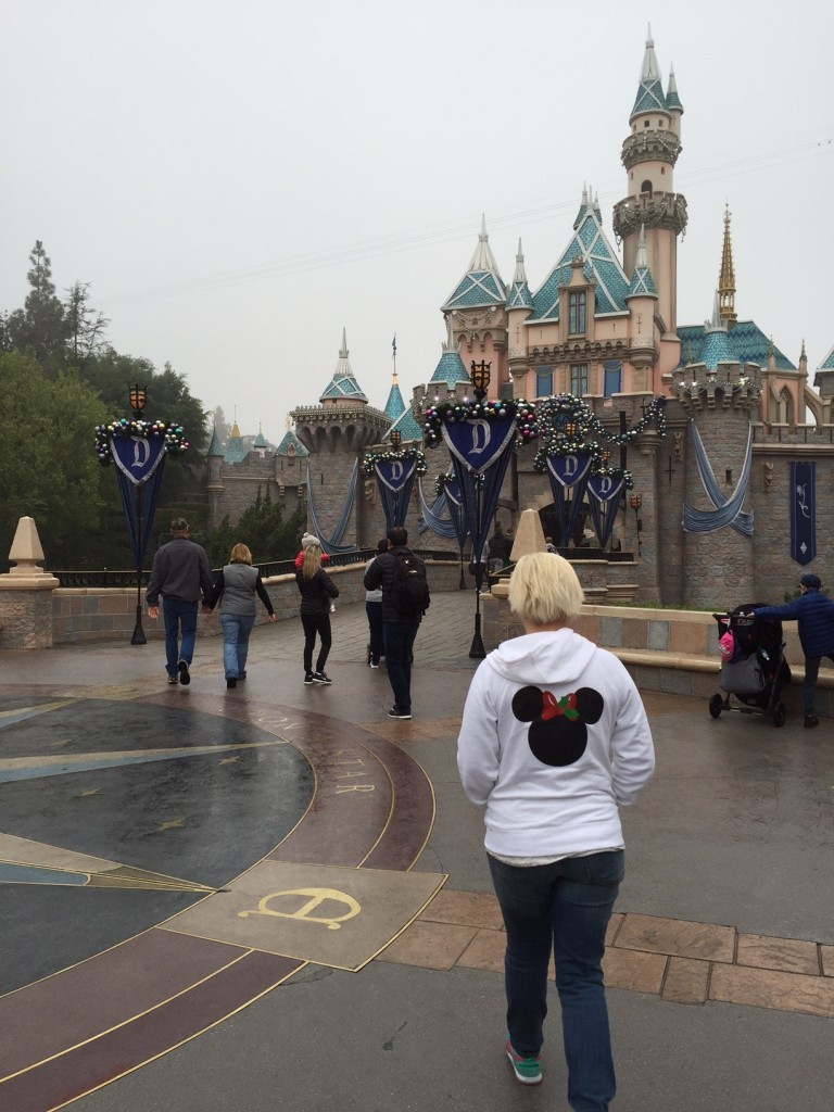 Hoodie at the Disneyland Castle