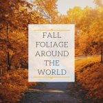 Fall Foliage Around the World