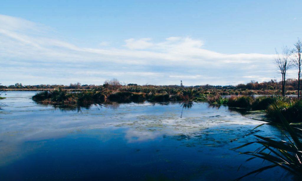 Travis Wetlands
