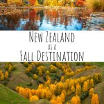 Why You Should Consider a Fall Visit to New Zealand